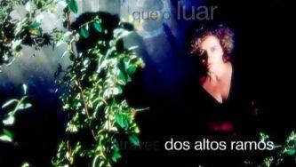 """""""O Luar"""", de Alberto Caeiro"""