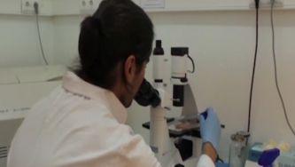 Química e bioquímica - investigação nacional