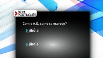 """Escreve-se """"jiboia"""" ou """"jibóia""""?"""