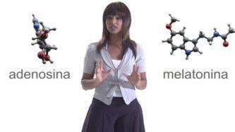 A Química do Sono