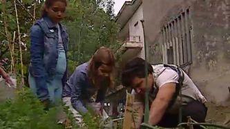 Horta biológica envolve toda a comunidade escolar
