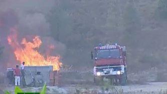 Prevenir incêndios florestais