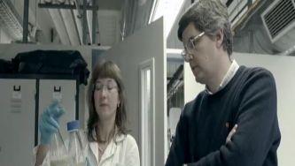 Vacinas de ADN: e tudo começou na curiosidade