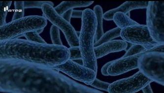 O que são micróbios?