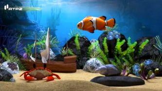 Como se deslocam os animais no seu habitat?
