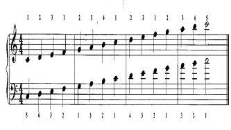 A melodia dos números