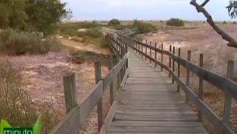 Andar nas dunas mas sem pisar