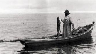 Faina maior, a pesca do bacalhau