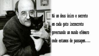 Manuel António Pina e a relação com a poesia