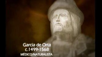 Garcia de Orta, o primeiro farmacologista