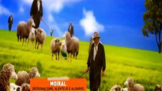 Moiral ou rabadão? Depende do pastor e do rebanho