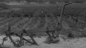 A Reforma Agrária