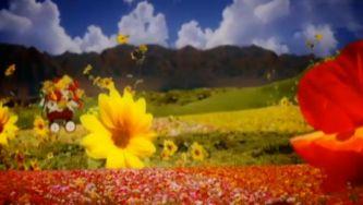 O simbolismo de flor