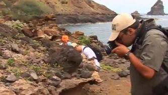 Os fósseis marinhos de Santa Maria