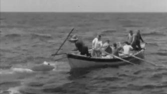 Baleeiros açorianos: a história que não se repete