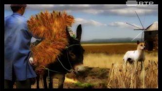 À sombra do burro entra o cão no moinho? É provérbio!