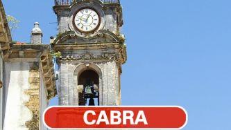A cabra que toca em Coimbra