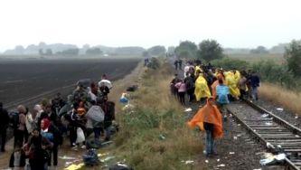 Uma voluntária portuguesa entre refugiados