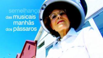 """Poema de Fiama Hasse Pais Brandão: """"Nada tão silencioso como o tempo"""""""