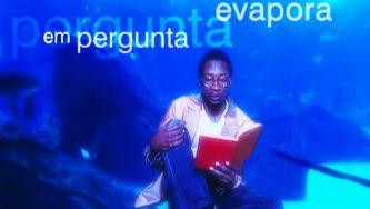 """""""Donna Mi Priega 88"""", de Paulo Leminski"""