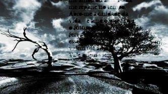 Herberto Helder, um poeta obscuro