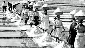 A tradição do sal no estuário do Mondego