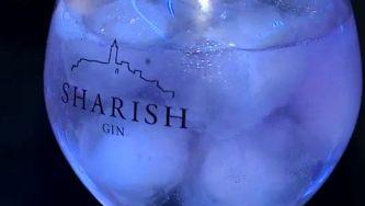 Contrariar o desemprego destilando gin
