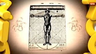 As proporções do corpo humano e o homem de Vitrúvio