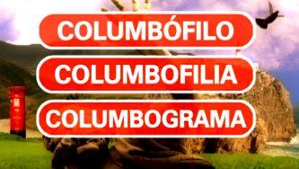 Columbófilo, columbolifia e columbograma: aqui há pombo