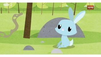 Porque é que o focinho dos coelhos está sempre a mexer?