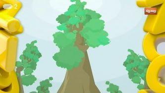 Como é que as árvores respiram no inverno?