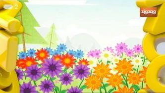 Porque é que as flores têm cores diferentes?