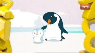 Como é que os pinguins da Antártida não congelam no meio daquele gelo todo?