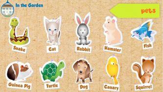 Animais de Estimação - Pets vocabulary