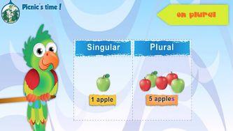 Plural - Regular and irregular plurals