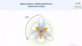 Sólidos geométricos: simetria de rotação