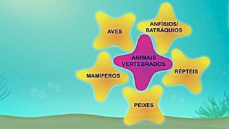 Os animais: classes de vertebrados
