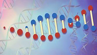Genética e problemas bioéticos