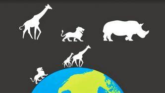 Níveis de organização biológica dos ecossistemas