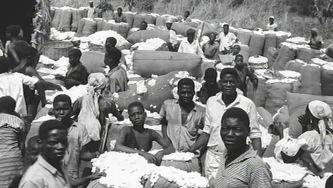 Angola, 1961: o início do fim
