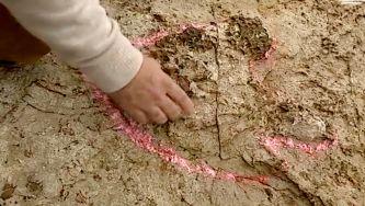 Seiscentas pegadas de dinossauros no Cabo Espichel