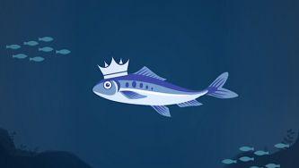 Quem quer sardinhas?